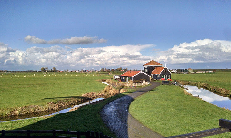 In the Netherlands, water policies are protected from politics for the common good